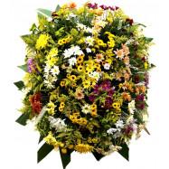 Coroa Flores do Campo