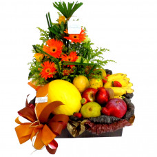Flores e Frutas Executiva